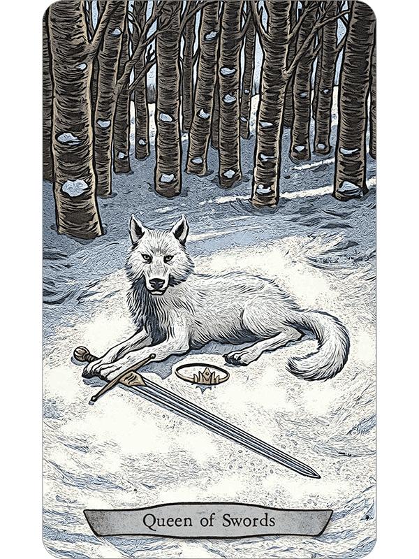 Animal Tarot Cards: Animal Totem Tarot