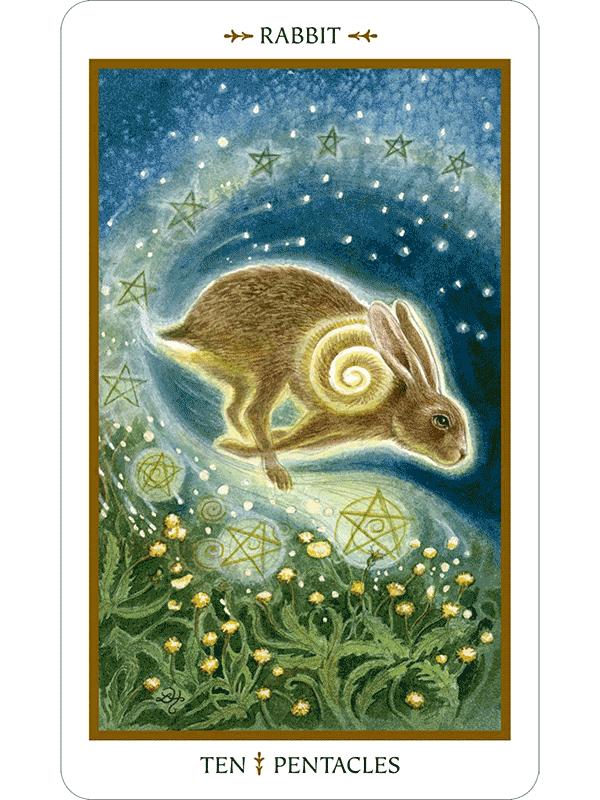 Animal Tarot Cards: Animals Divine Tarot