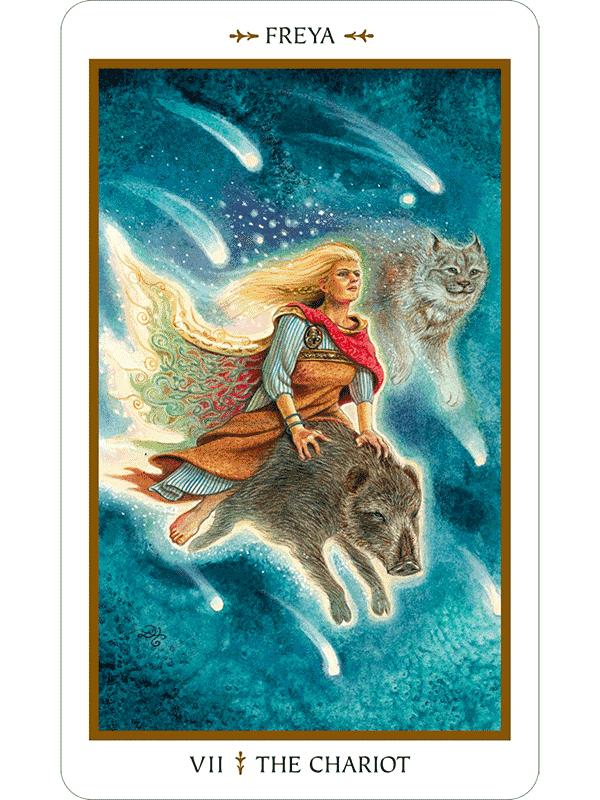 Animal Tarot: Animals Divine Tarot